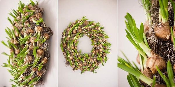 Bloomingayles uk spring bulb wreath